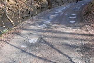 20110117薄氷.jpg